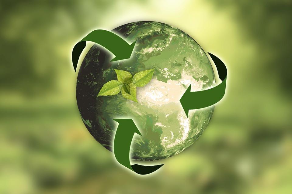 La Région Wallonne lance 2 appels à projets pour soutenir votre démarche de développement durable